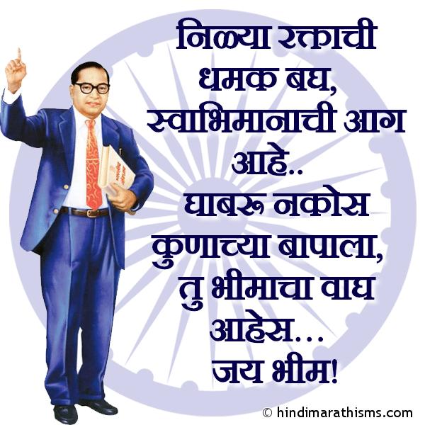 AMBEDKAR JAYANTI SMS MARATHI Image
